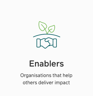Enablers icon